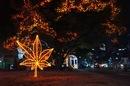 広島 平和大通りが おとぎの国に一変!ドリミネーション2011、動画も