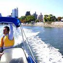 雁木タクシーで川から広島をパノラマビュー!鳥の楽園にも大接近