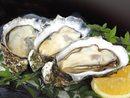 牡蠣ができるまで。全国シェア1位の広島かき