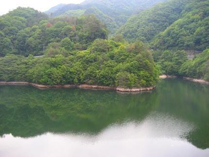 魚切ダム の側道