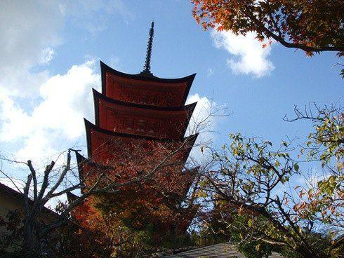 宮島 五重塔を下から眺める画像