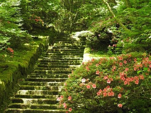 三景園 ツツジ