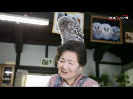 広島県神石高原のフクロウの里親 おばあちゃん