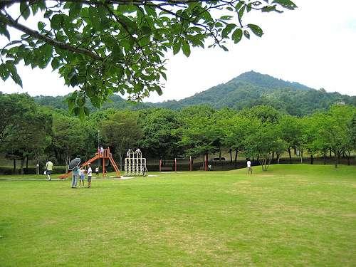 宮島SA下り、緑いっぱいの公園