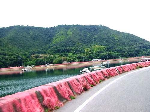 内海町・田島の風景と赤い網