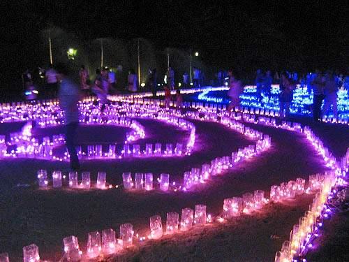 花と光のページェント 植物公園18