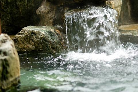 温泉舎 (ゆのや) 湯田温泉の泉源