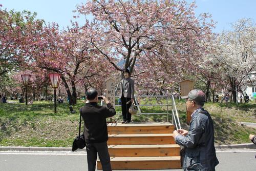 広島 造幣局 花のまわりみち 画像11