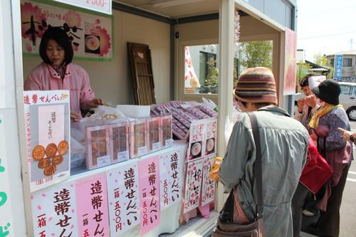 広島 造幣局 花のまわりみち 画像26