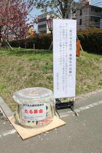 広島 造幣局 花のまわりみち 画像7