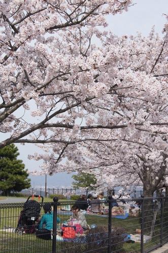 広島市 佐伯運動公園18
