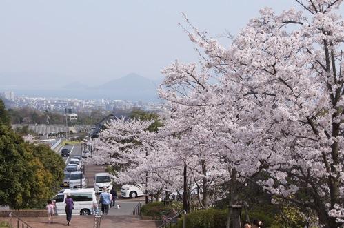 広島市 佐伯運動公園19