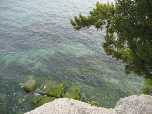 竹原市 エデンの海 画像2