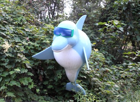 ドルフィンビーチ キャラクター