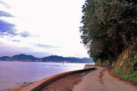 福山市 横島、海岸沿いの美しい景色4