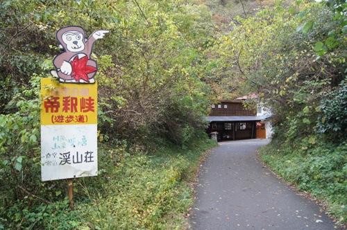 広島県 紅葉の名所 帝釈峡の画像6