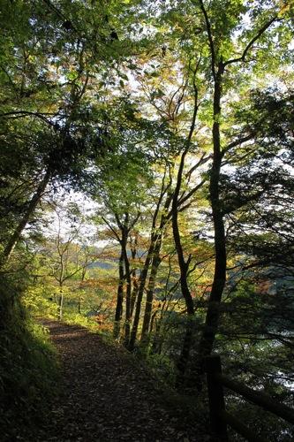 広島県 帝釈峡 紅葉の名所 画像2