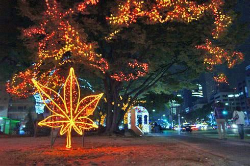 広島 平和大通りが おとぎの国に一変
