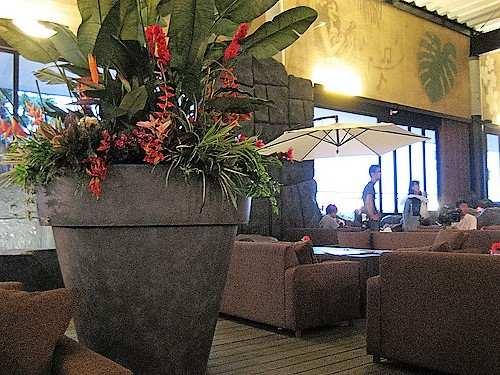 Jカフェ(J CAFE) マリーナホップ ハワイな店内22