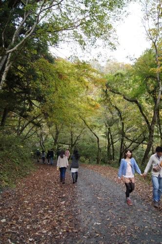 広島県 紅葉の名所 帝釈峡の画像10