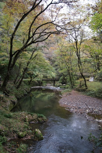 広島県 紅葉の名所 帝釈峡の画像11