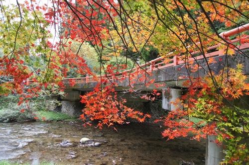 広島県 紅葉の名所 帝釈峡の画像5