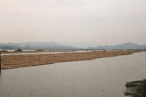 福山市松永の木材港 画像 5