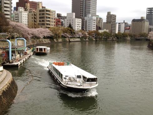 広島平和公園 桜の画像10