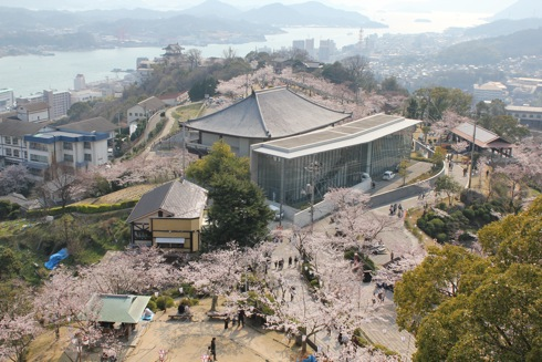 尾道 千光寺公園は 桜名所100選!風景と桜を同時に楽しむ