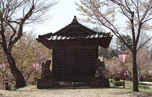 庄原市 上野公園の桜 画像2