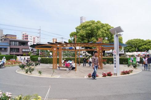 福山 ばら公園の画像32