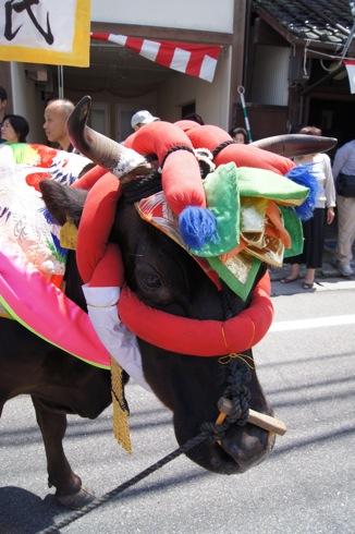 壬生の花田植え 飾り牛の画像21