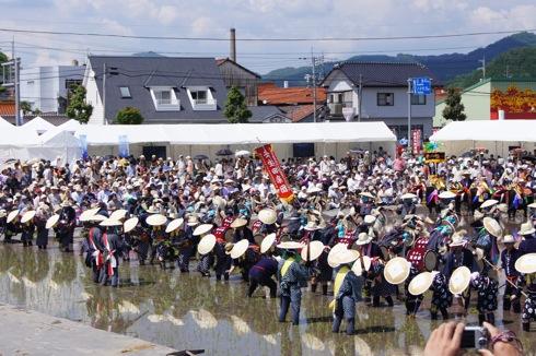 壬生の花田植え 囃子の画像28