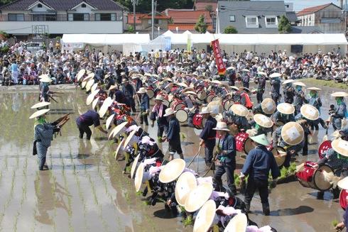 壬生の花田植え 囃子の画像38