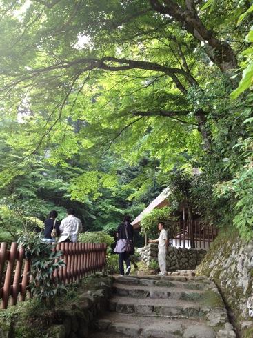 広島 安芸太田町 吉水園の画像