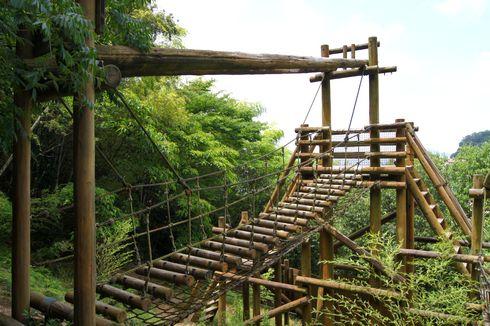 狩留賀海浜公園(ロマンチックビーチかるが) 画像20
