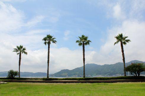 狩留賀海浜公園(ロマンチックビーチかるが) 画像5