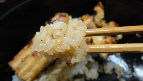あなごめし 和田のお米が美味しい