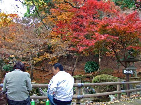 三次市 尾関山公園 池でお茶する夫婦