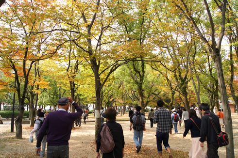 広島フードフェスティバル 会場の中央公園