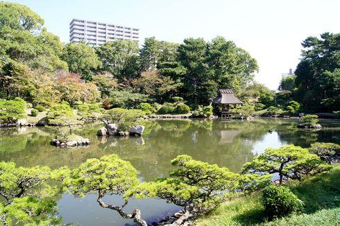 雁木タクシーと縮景園のコース