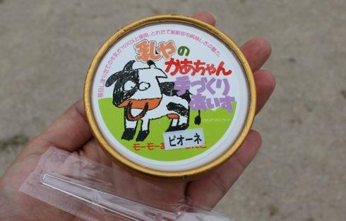モーモーあいすらんど、庄原市口和 酪農家の母ちゃんの手作りアイス