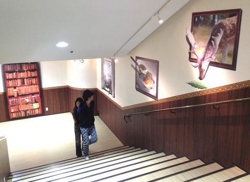 ドンキKAIDAN美術館、ドンキホーテ広島八丁堀店4
