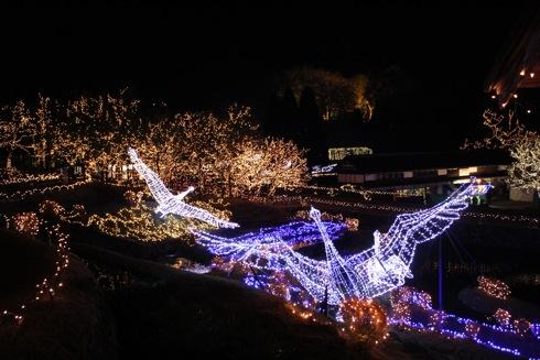 備北丘陵公園 イルミネーション2012 飛び立つ白鳥