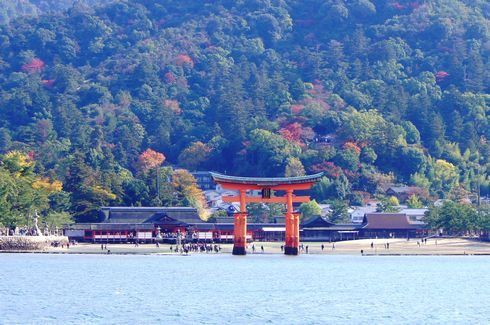 2012 宮島 大鳥居と紅葉の様子