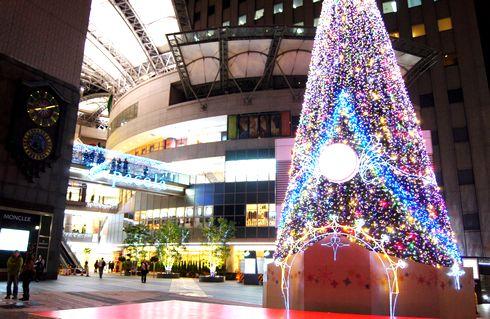 広島 パセーラのクリスマスツリーが点灯、基町クレド一帯が華やかに