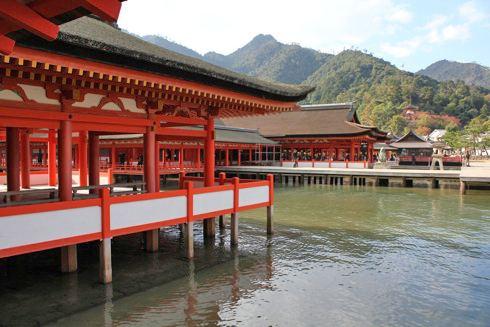 宮島 厳島神社 の画像
