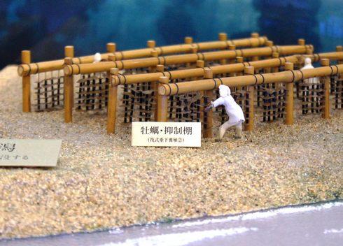 広島市郷土資料館 カキの養殖 風景