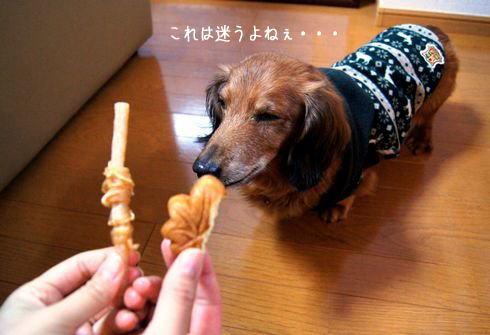 犬用もみじ饅頭 vs ササミ巻き巻き小型犬用ガム
