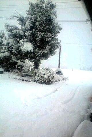庄原市で交通事故 多発!降雪、凍結対策に冬用タイヤ装着を